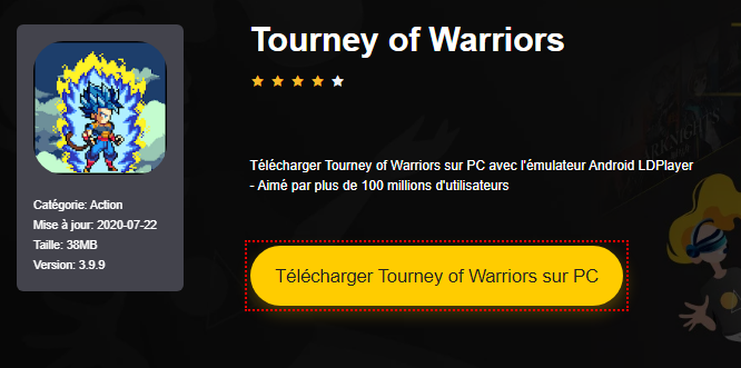 Installer Tourney of Warriors sur PC