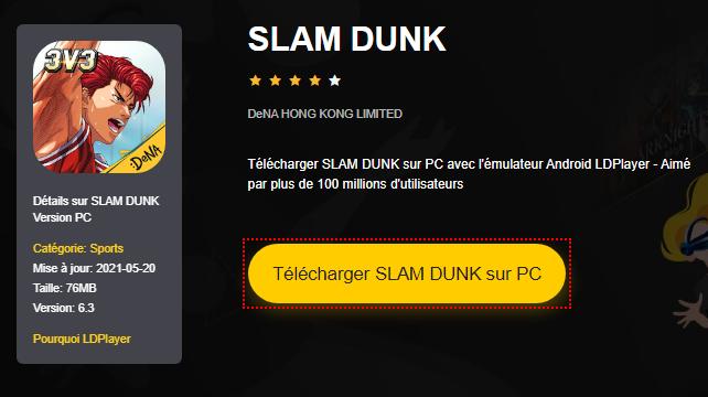 Installer SLAM DUNK sur PC